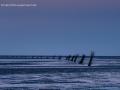 cuxhaven2013-12