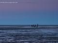 cuxhaven2013-13
